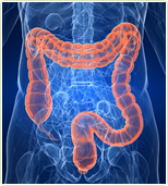 The best Colon Hydrotherapy in Maryland
